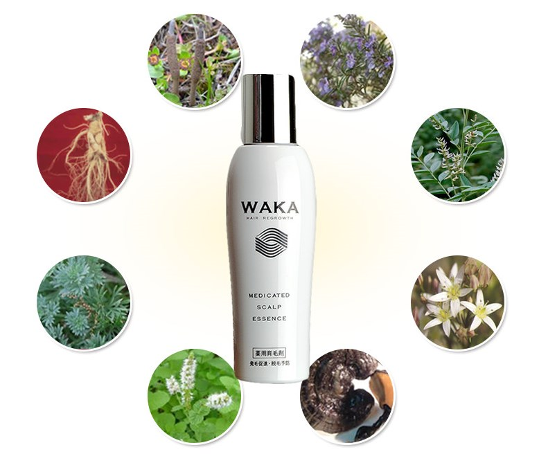 成分解析からの視点で読み解く生薬100%の育毛剤WAKAの隠された効果