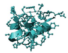 グロースファクター(成長因子)IGF