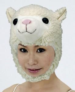 hat-touhi-katai